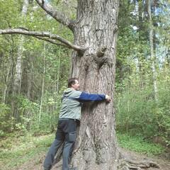 Luontoretki Laurinmäellä