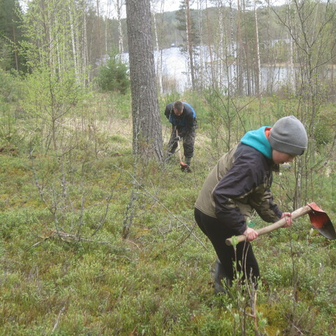 Outdoor voluntary work