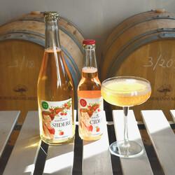 Cider or beer tastings by Bornemanns