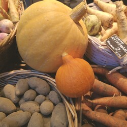 Autumn tastes and stories at the Old Market Hall