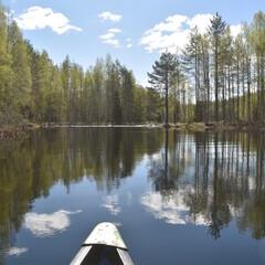 Canoetrip in Lieksa