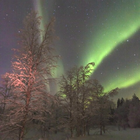 Northern lights, arctic sky and photographing