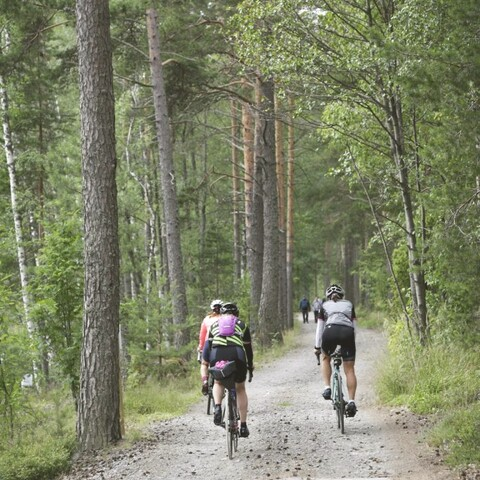 Gravel Bike Tour