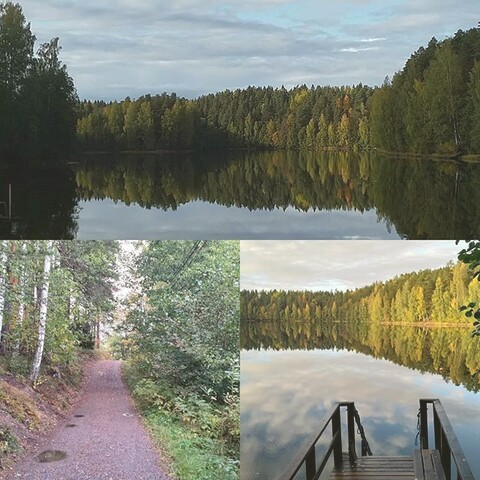 Coaching in the woods and lakes in Hämeenlinna