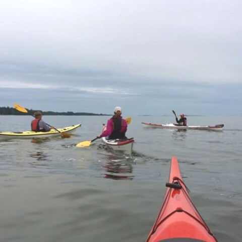 Private Helsinki shore tour with kayaks