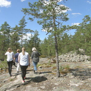 Guided Tour in Sammallahdenmäki, Rauma