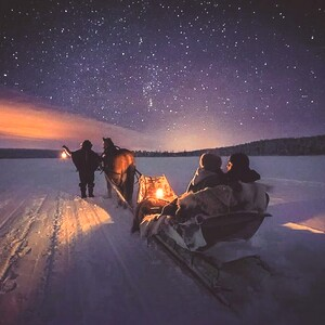 Northern lights hunting in the horse sleigh, Muonio