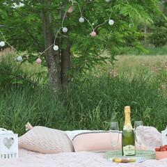 Romantic picnic in a parc