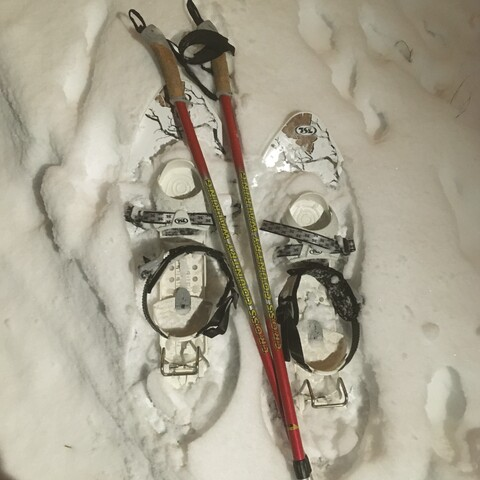 Snowshoe hiking
