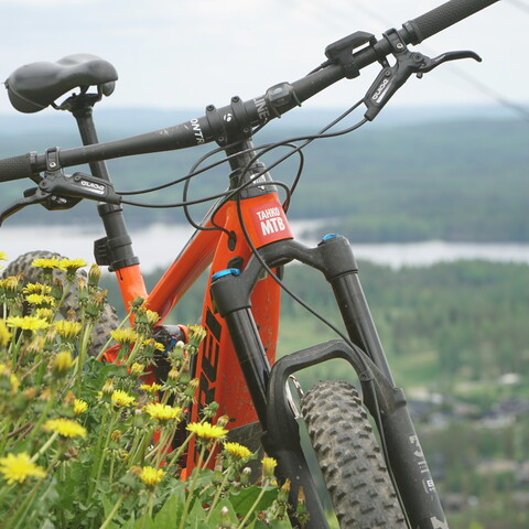 Mountain bike guiding and teaching