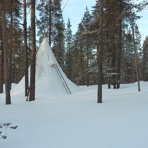 Snowshoeing and lunch with blazed salmon in tipi, Inari