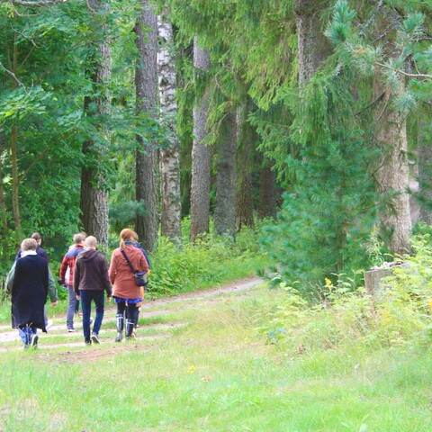 Guided nature tour in the landscapes of Mäntyniemi Manor