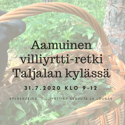 Aamuinen villiyrtti-retki Taljalan kylässä