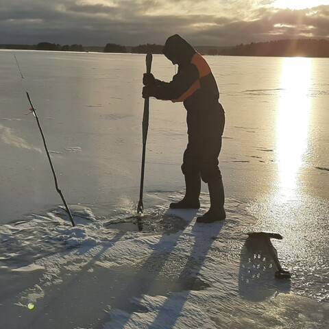Traditional net fishing under ice