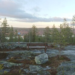 Walk with a local in Ounasvaara in Rovaniemi