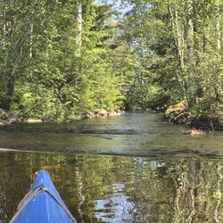 An Adventurous Canoeing Trip to Lieviskäjoki