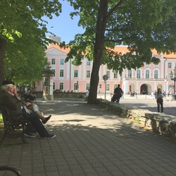 Walk in old Tallinn, talk about new Estonia