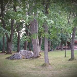 Picnic di Ferragosto nel Parco di Kokonniemi, Porvoo