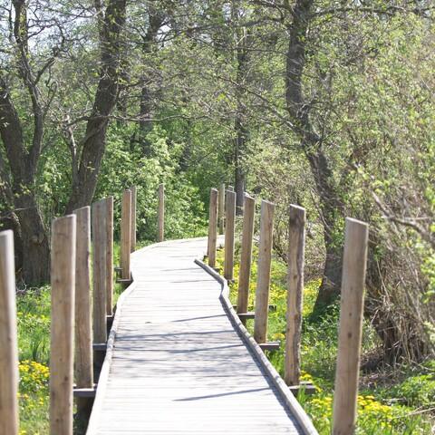 Vanhankaupunginlahti nature walk