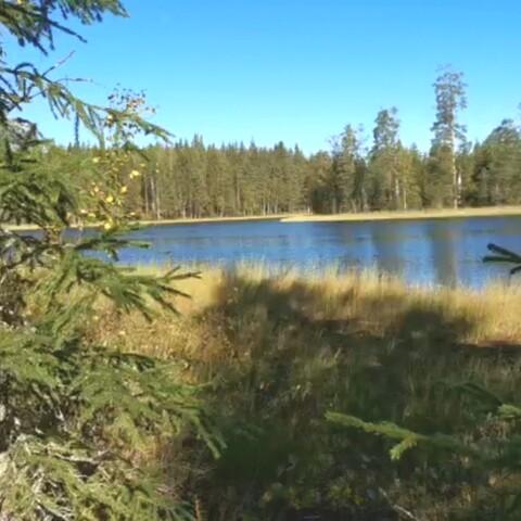 Saimaa Guide - SoKa Experience