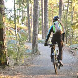 Cycling Helsinki's coastline, off the beaten path half-day trip