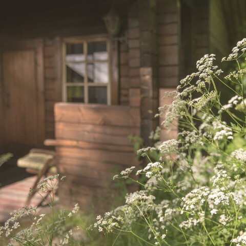 Relaxing accommodation in countryside