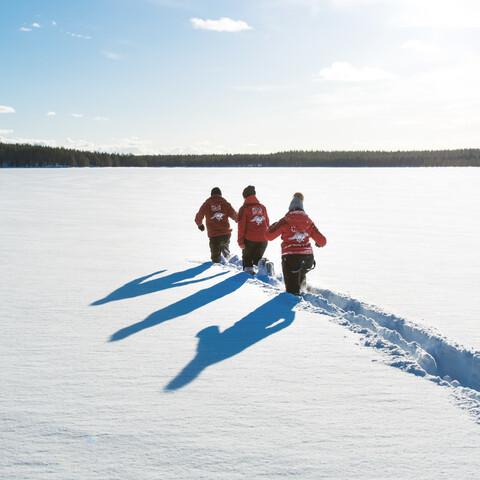 Metsäkartano snowshoeing