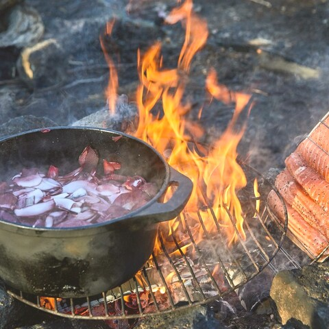 Campfire food activities