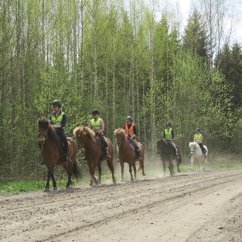 Maastoretki ratsain - Kokeneet ratsastajat