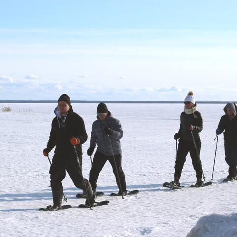 Snowshoeing in Hietasaari, Oulu