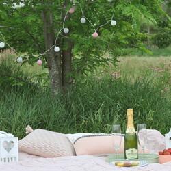 Romantic picnic in a park