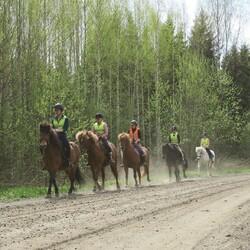 Horseback trail riding - Advanced riders
