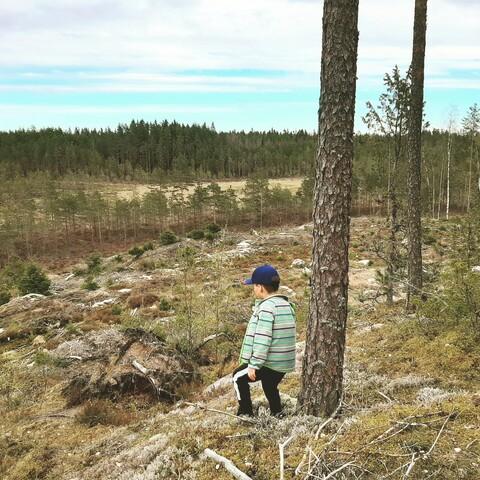 Nature in Ypäjä