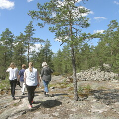 Guided Tour in Sammallahdenmäki