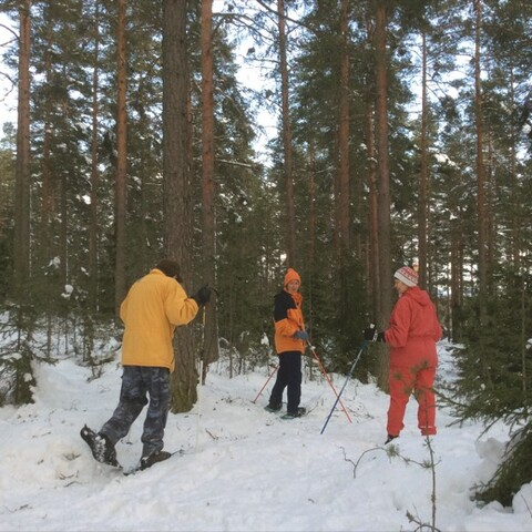 Private Excursion to Nuuksio National Park