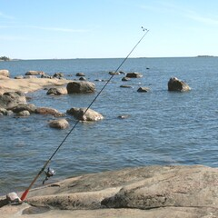Fishing in Helsinki areas