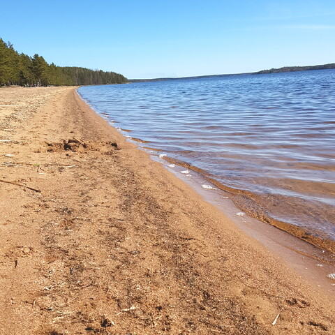Discover the beauty of finnish nature