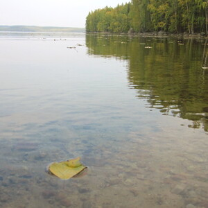 Lakeside nature experience, Jyväskylä