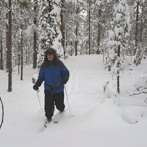 Discover Pyhä-Luosto National park with Wilderness skiing