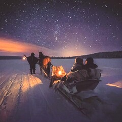 Northern lights hunting in the horse sleigh