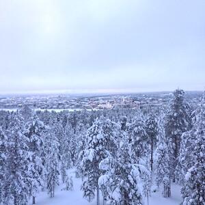 Walk with a local in Ounasvaara in Rovaniemi, Rovaniemi