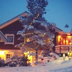 Christmas in Granny's place