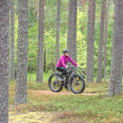 Fatbikes for rent