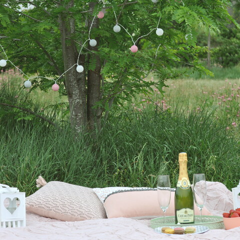 Romantic picnic in a parc