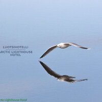 Luotsihotelli | Arctic Lighthouse Hotel