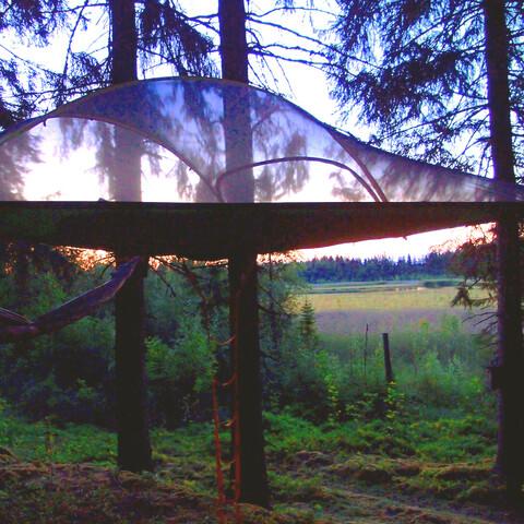Sleep in Tentsile tree tent next to a birdlake
