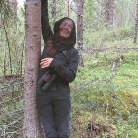 On the bear's tracks hike