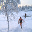 Sauna & Ice swimming