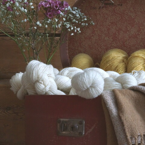 Dye your textils and yarns naturally with plants and mushrooms