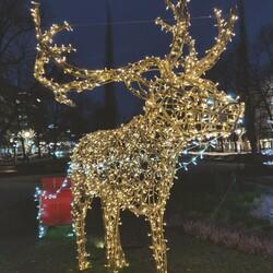 VIDEO - Lahjaksi 9 vinkkiä vatsan ja mielen Hyvän Olon Jouluun!